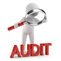 Professional training: standards on auditing